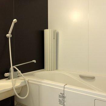 クールな印象の浴室。
