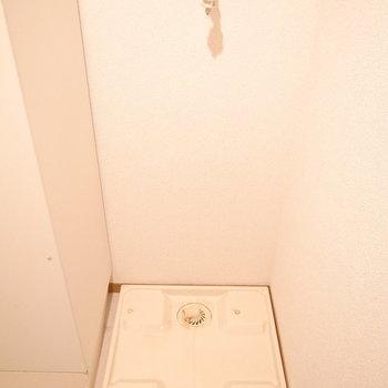 お風呂の向かいに洗濯パンがあります。(※写真は1階の同間取り別部屋のものです)
