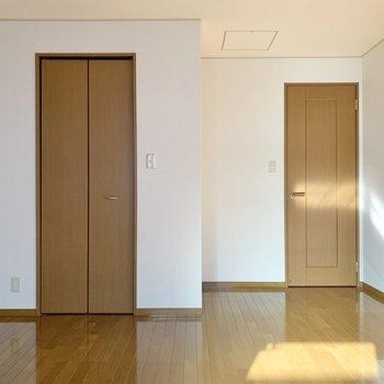【洋室8.0帖】窓を背にすると、細長い扉の収納が確認できます。