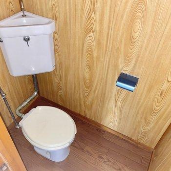お手洗い。木目に囲まれた空間です。※写真は通電前・フラッシュを使用しています。