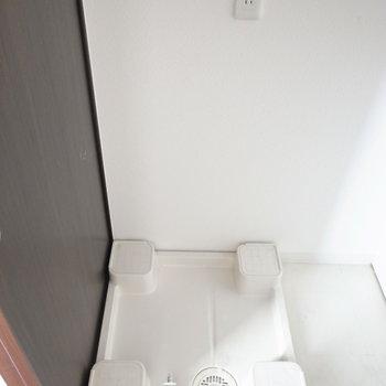 左となりに洗濯パンがあります。なんと、蛇口は地面からにょきっと。