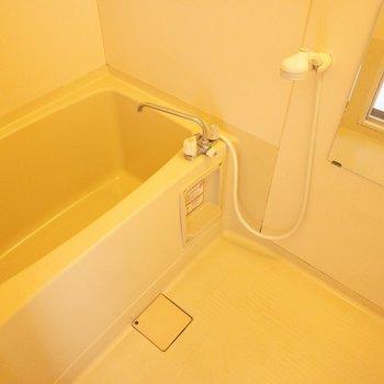 しっかり広さのあるお風呂。