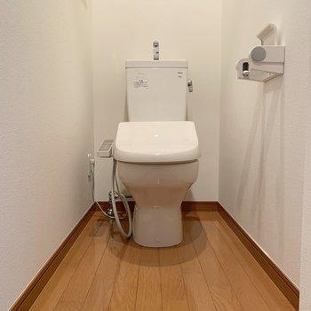温水洗浄便座付きの個室トイレになります