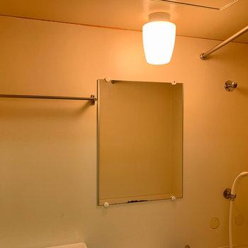 タオル掛けや鏡などは付いています
