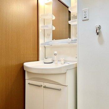 洗面台。ラックが多くついていて、小物を分けて収納できそうです。