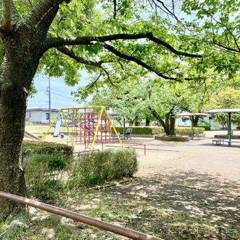 お部屋の目の前にある、大きな公園。明るい陽射しに緑が揺れてとっても気持ちよさそう。