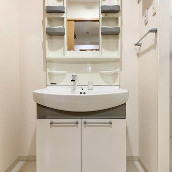 独立洗面台なので支度もスムーズにできますね。