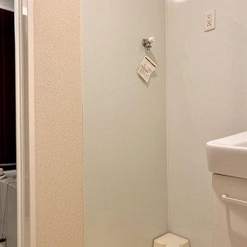 独立洗面台の左隣に室内洗濯機置き場があります。