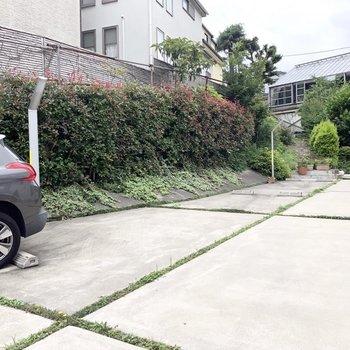 駐車スペースです。緑が豊か。