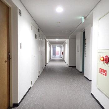 共用部】ゆったりめの廊下です。