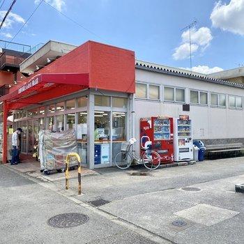 バス停横にあるスーパー。近くにコンビニもありました。