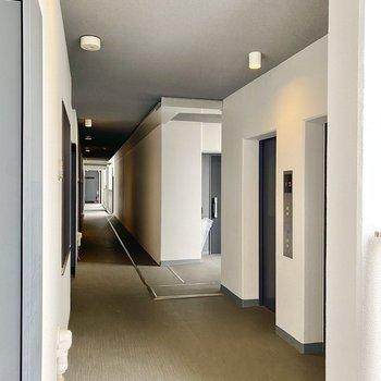 玄関前共用部。エレベーターが目の前にあります。