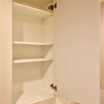 左横には小ぶりな戸棚が。洗剤など収納できそう。