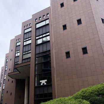 お部屋から少し歩くと、5階建ての市営図書館を利用できます。