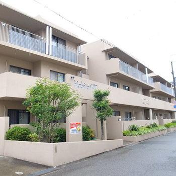 低めの3棟が並んだマンションです。ベージュと緑がやさしい色合い。