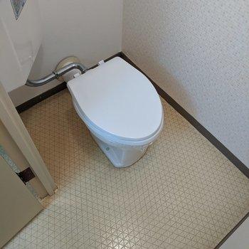 ゆったりとした広さのトイレです。
