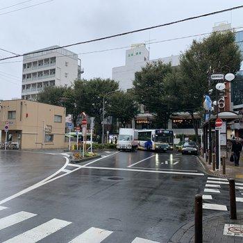 成増駅は駅ナカやロータリー周辺など、飲食店がたくさんあります。