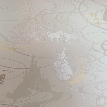【洋室7.8帖①】クローゼットの壁はプリンセス。