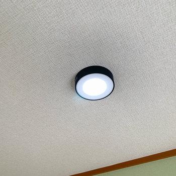 リビングや和室、廊下はダウンライト。