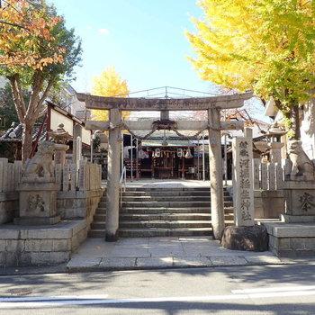 周辺環境】神社もすぐそばにありました。ありがたいです。