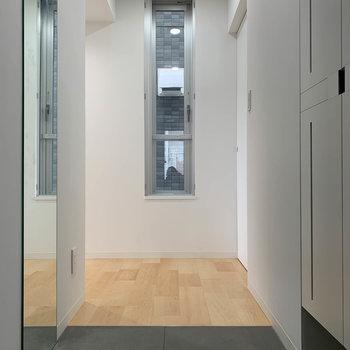 玄関の扉側から。サイドに鏡がついてるのも便利です。