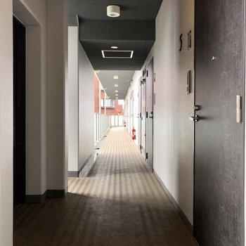 共用廊下も綺麗に整備されていました。