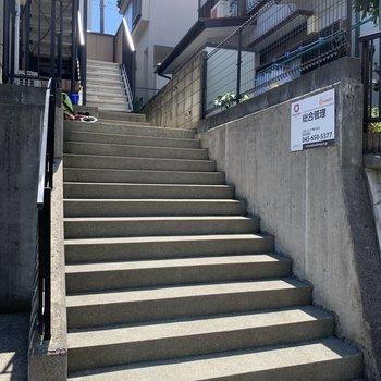 道路から少し階段を登ります。
