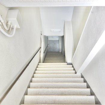 玄関はエントランスを入って正面の階段を真っ直ぐ登った先に。