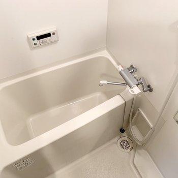 浴室はシンプル。(※写真は2階の同間取り別部屋のものです)