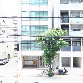 【2Fベランダ】マンションや歩道がはっきりと見えますね。視線がすこし気になるかも。