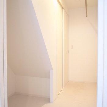 そしてウォークインクローゼット!階段下部分もボックスで有効活用したいです。