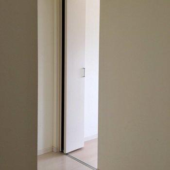 ウォークインクローゼット!なんとさっきの洋室につながっています。2つのお部屋で兼用のクローゼット!おもしろい!(※写真は3階の反転間取り別部屋のものです)