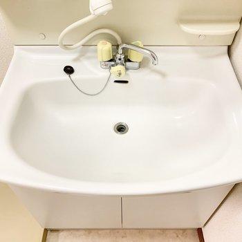 大きめの洗面台で2人並んでも大丈夫そう。