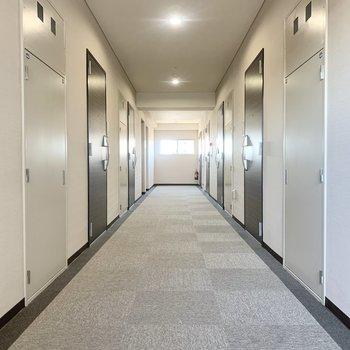 お部屋はエレベーター奥の角部屋です。