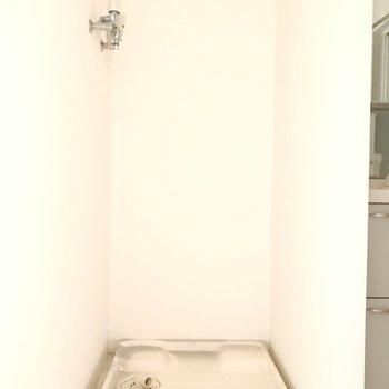 洗面台横には洗濯機スペース。