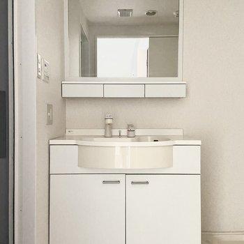 洋室入口のすぐ右の扉を開けると、大きな鏡の洗面台が。