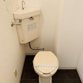 広いお手洗い、ウォッシュレットはありません。