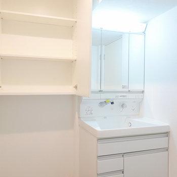 入って右手には洗面台。隣には扉付きの収納。その下のスペースには、追加で収納ケースを置けます。