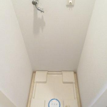 洗濯機置き場は扉をあけて(※写真は8階の同間取り別部屋のものです)
