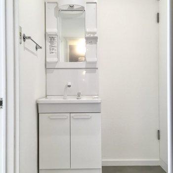 横にはコンパクトサイズの独立洗面台。