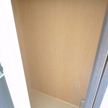 少し奥行きのあるクローゼットです。ハンガーパイプの上は棚になっています。(※写真は2階の同間取り別部屋のものです)