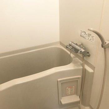 お風呂は普通かな?※写真は前回募集時のもの