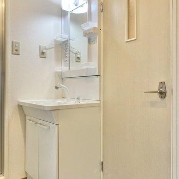収納もしっかりある洗面台。隣の扉はトイレです。