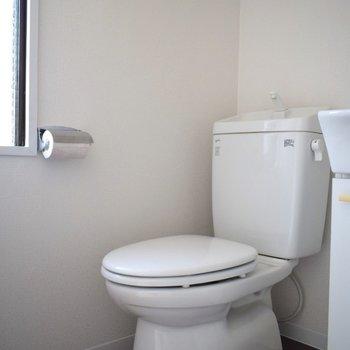 トイレはすごく綺麗。 小さな窓があるため、電気なしでもこの明るさ。