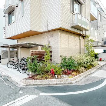 エントランス左手には植栽がわさわさと。その奥にはもうひとつの駐輪場と駐車場があります。