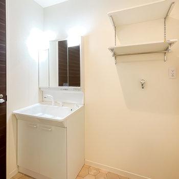 三面鏡の大きな洗面台に、パン無しタイプの洗濯機置場。便利な可動棚も設置されています。
