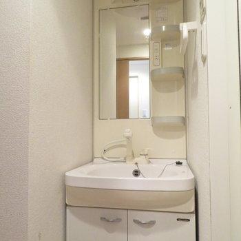 洗面台に収納は十分(※写真は3階の同間取り別部屋のものです)