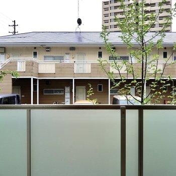 1階ですがフェンスが高めで安心◎外には木が植えてあり彩りも感じられます。
