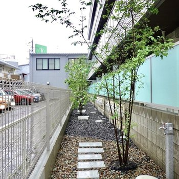 エントランス前だけでなくベランダ側にも木が植えられていて、どこでも素敵な雰囲気でした。