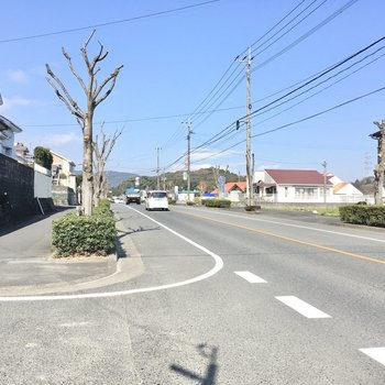 大通りは交通量が多め。残念ながらスーパーやコンビニは近くにありません・・・